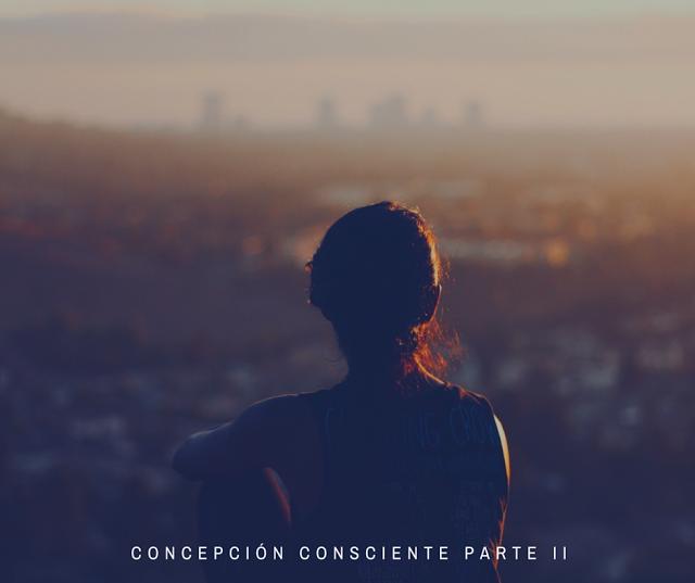 concepciC3B3nconscienteparteii28129