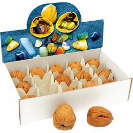 Nueces mágicas con piedras semi-preciosas
